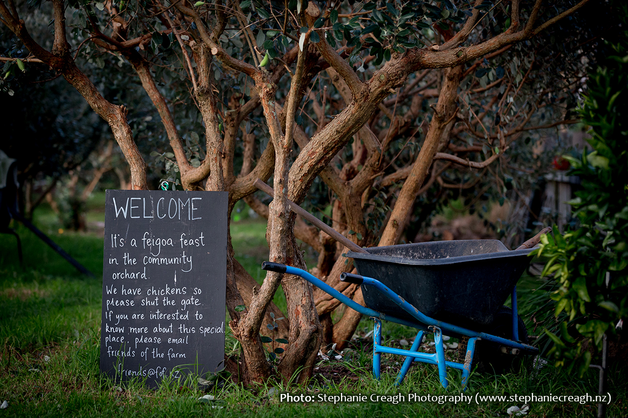 Friends of the Farm Community Orchard